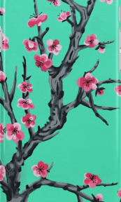 arizona phone case